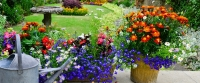 Plan For Fall With August Plantings
